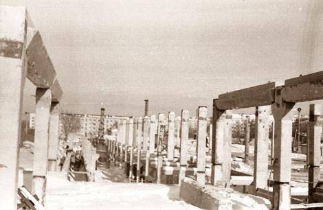 Строгие ряды свай и опор. Ноябрь 1965 г.
